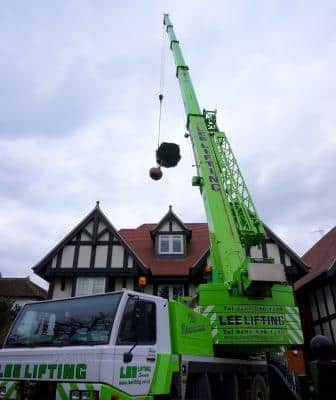 lifting a large tree over the roof of a house