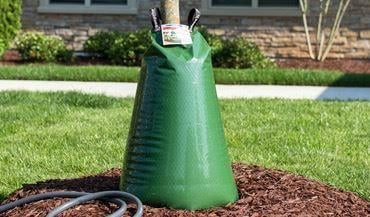 treegator automatic tree watering system