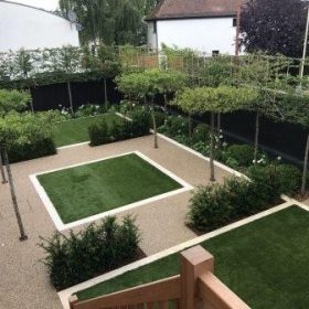pleached screening for privacy in garden